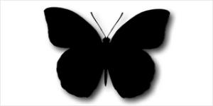 """El elemento que une las historias: Una mariposa negra conocida como """"Teufel"""""""